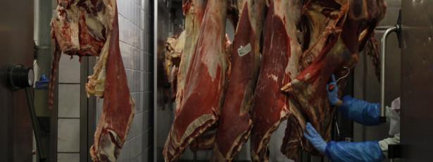ASAE deteve dono de talho e apreendeu 15 kg de carne e peixe