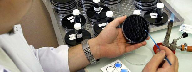 'Legionella' não detetada em minas de Neves-Corvo