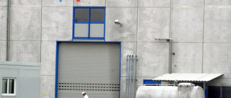 Trabalhadores da Parmalat Portugal iniciam hoje cinco dias de greve