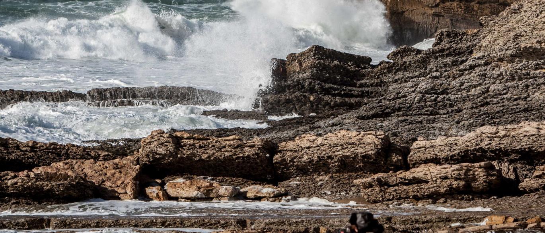 Resultado de imagem para Sete distritos sob aviso laranja na terça devido à agitação marítima