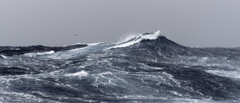 Grupo de pescadores descobre bomba ao largo da Nazaré