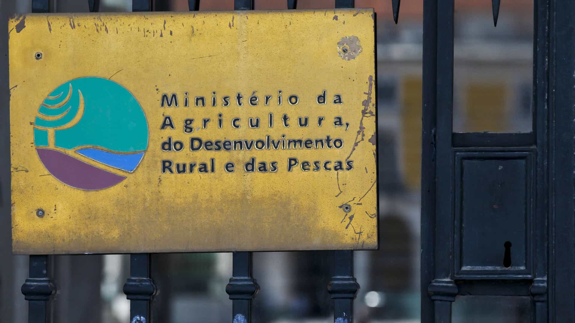 """Governo """"está ilegalmente impedido"""" de interferir na gestão da Lactogal"""