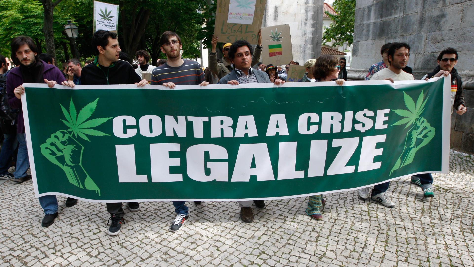 Meio milhão de portugueses consomem canábis regulamente