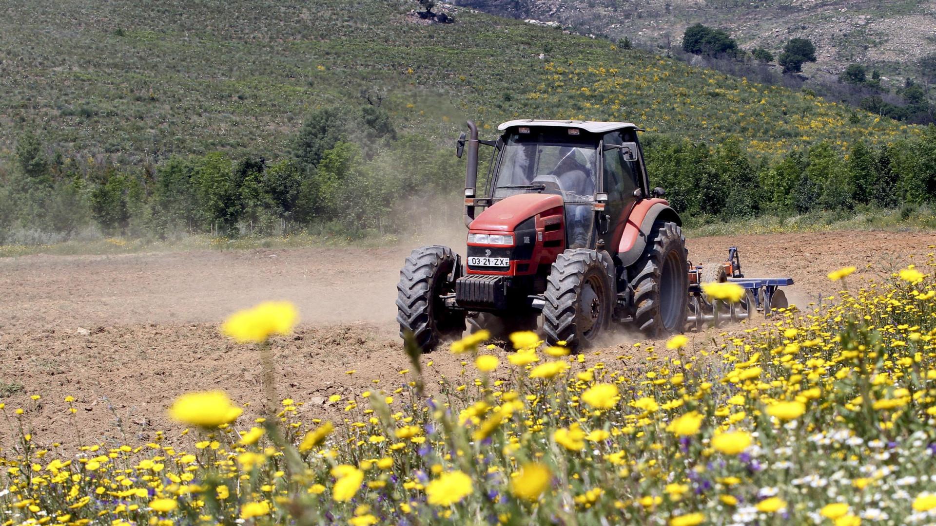 Alterações climáticas ameaçam terrenos agrícolas do Baixo Vouga