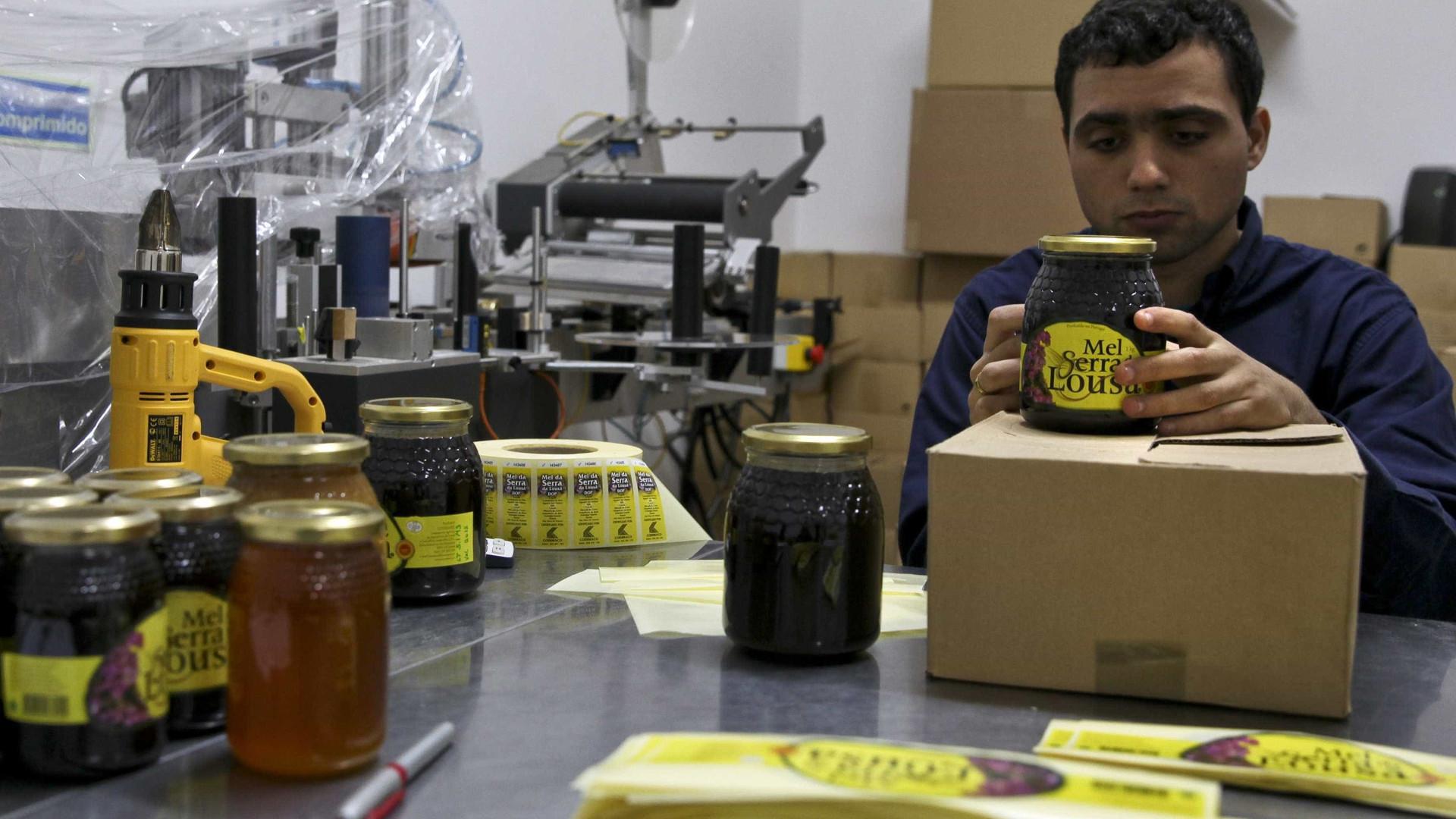 Cooperativa de apicultores celebra 25 anos e exporta mel