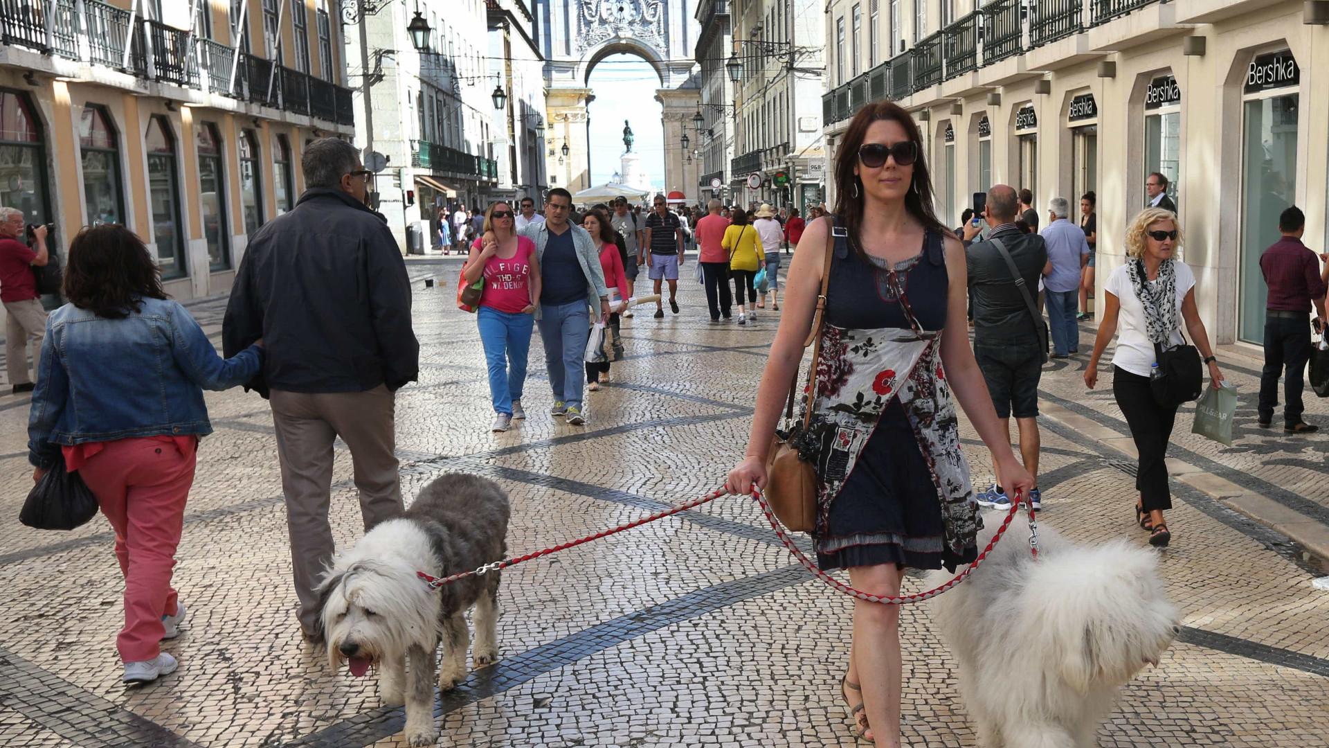 Colocação de barreiras de segurança em Lisboa estava em estudo há meses