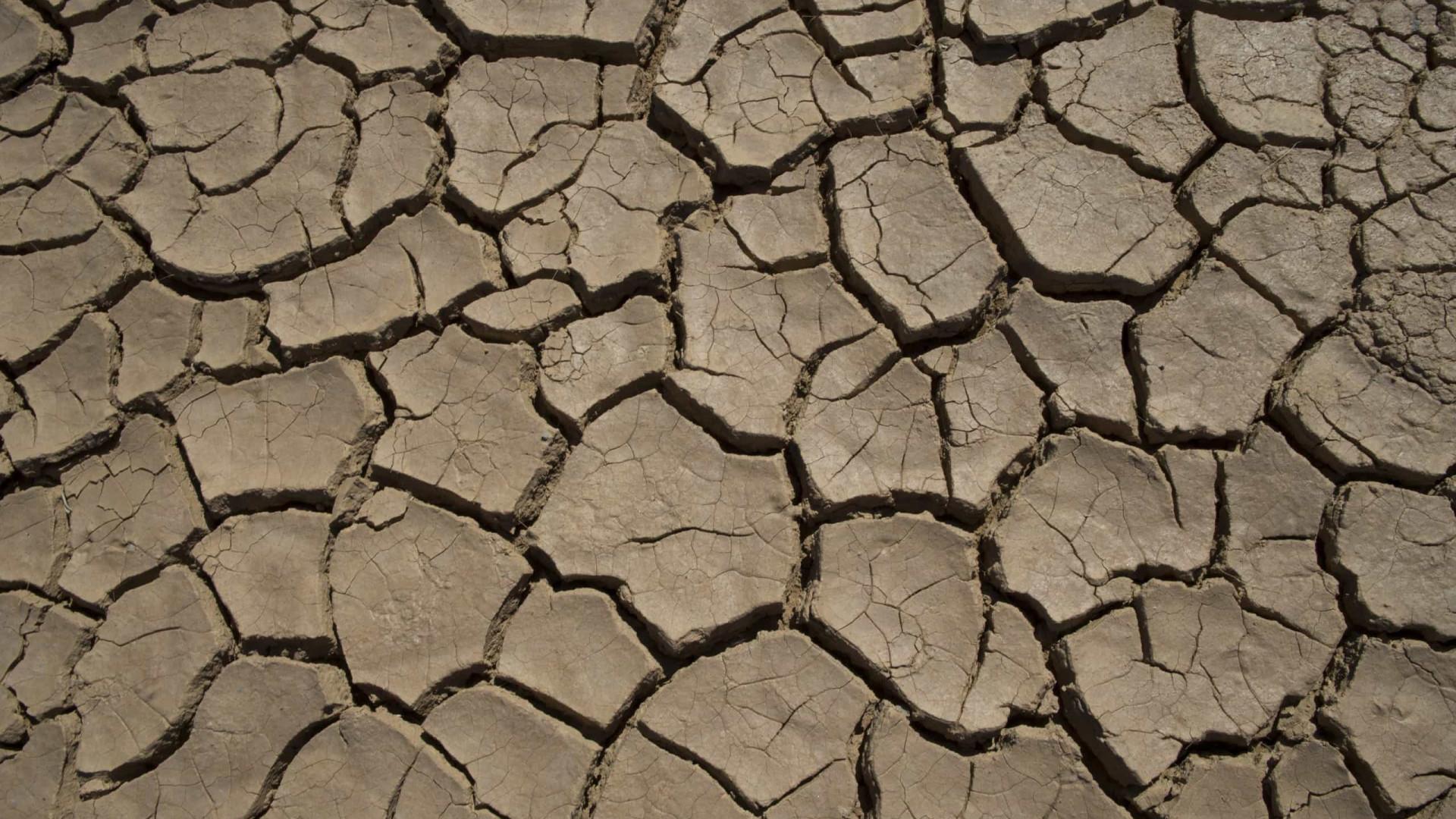 Seca prolongada afeta 1,42 milhões de pessoas em Angola
