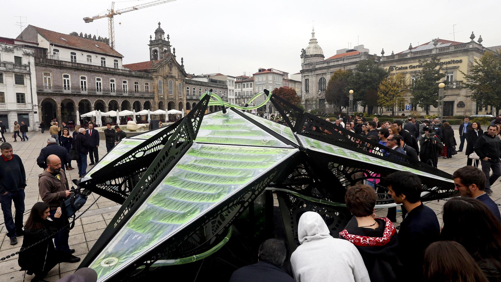 """Braga apresenta """"Escultura viva"""" que purifica mais ar do que 25 árvores"""