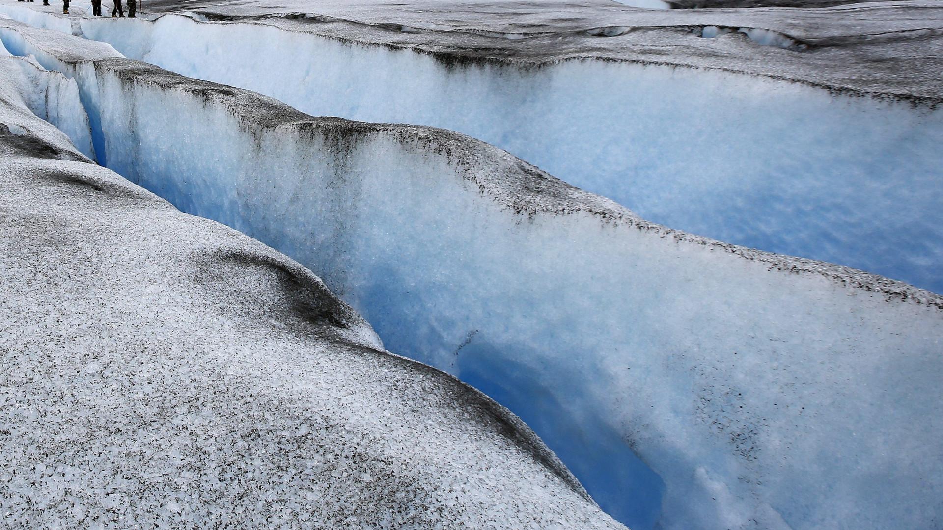 Réptil marinho com 150 milhões de anos descoberto na Antártida