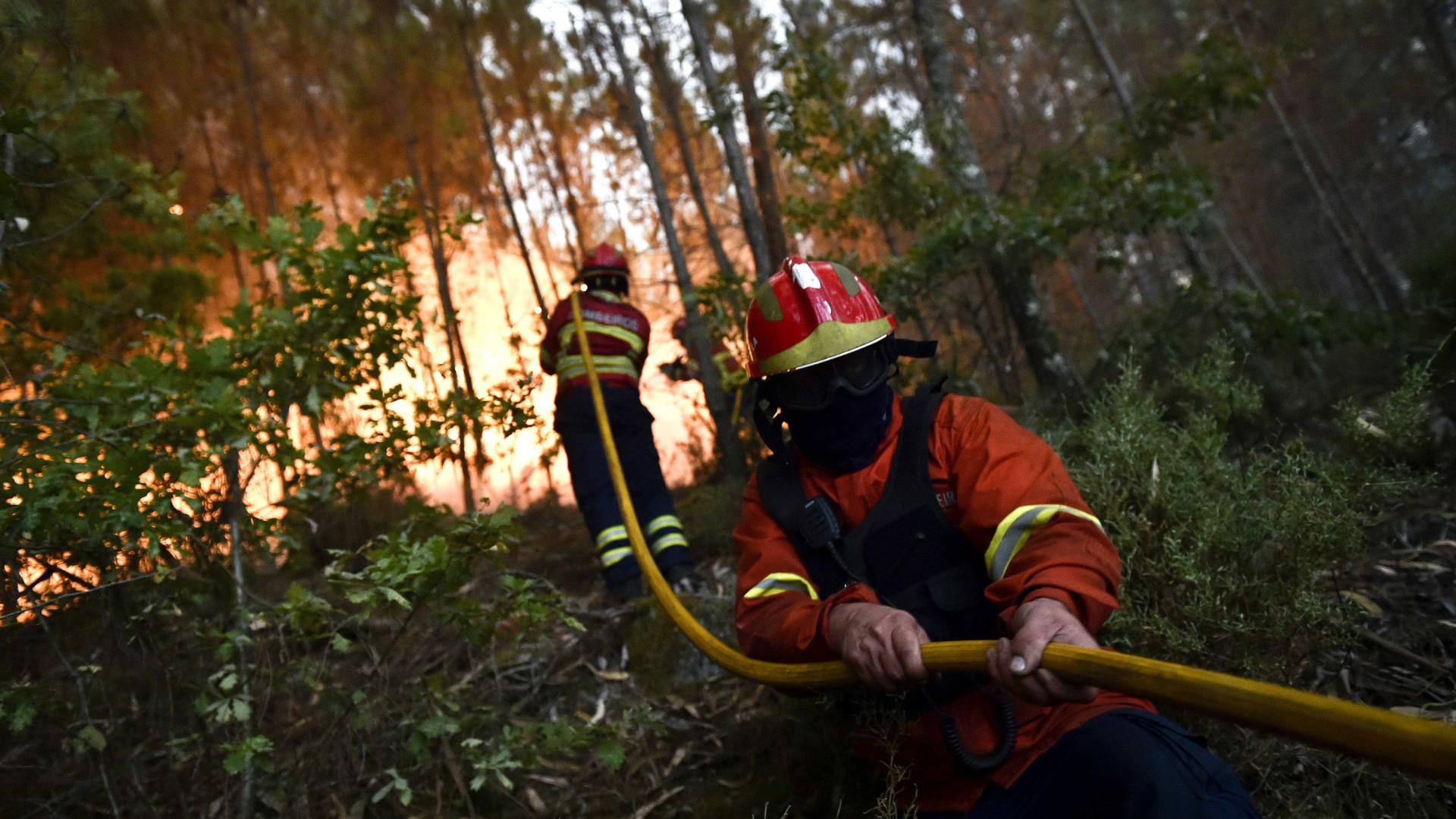 Fogo de Vila Velha de Ródão continua com várias frentes activas