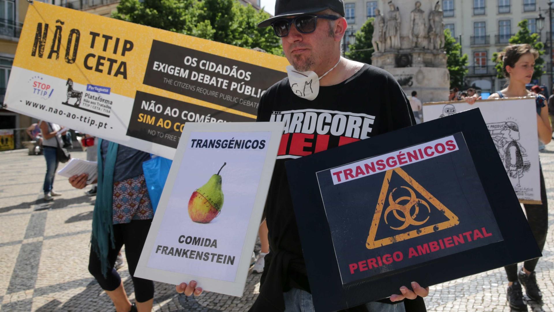 Protestos em Lisboa e Porto contra trangénicos da Monsanto