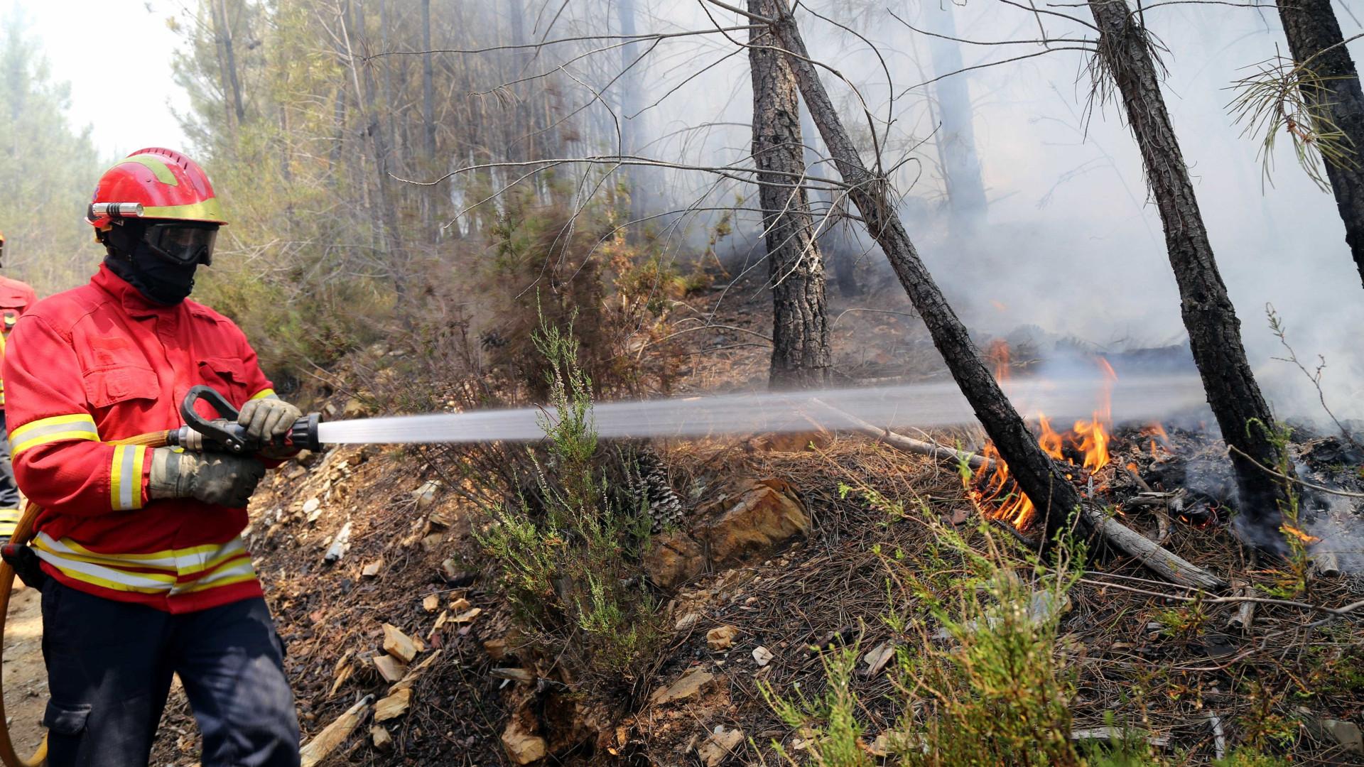 GNR deteve suspeito de atear fogo em Tabuaço