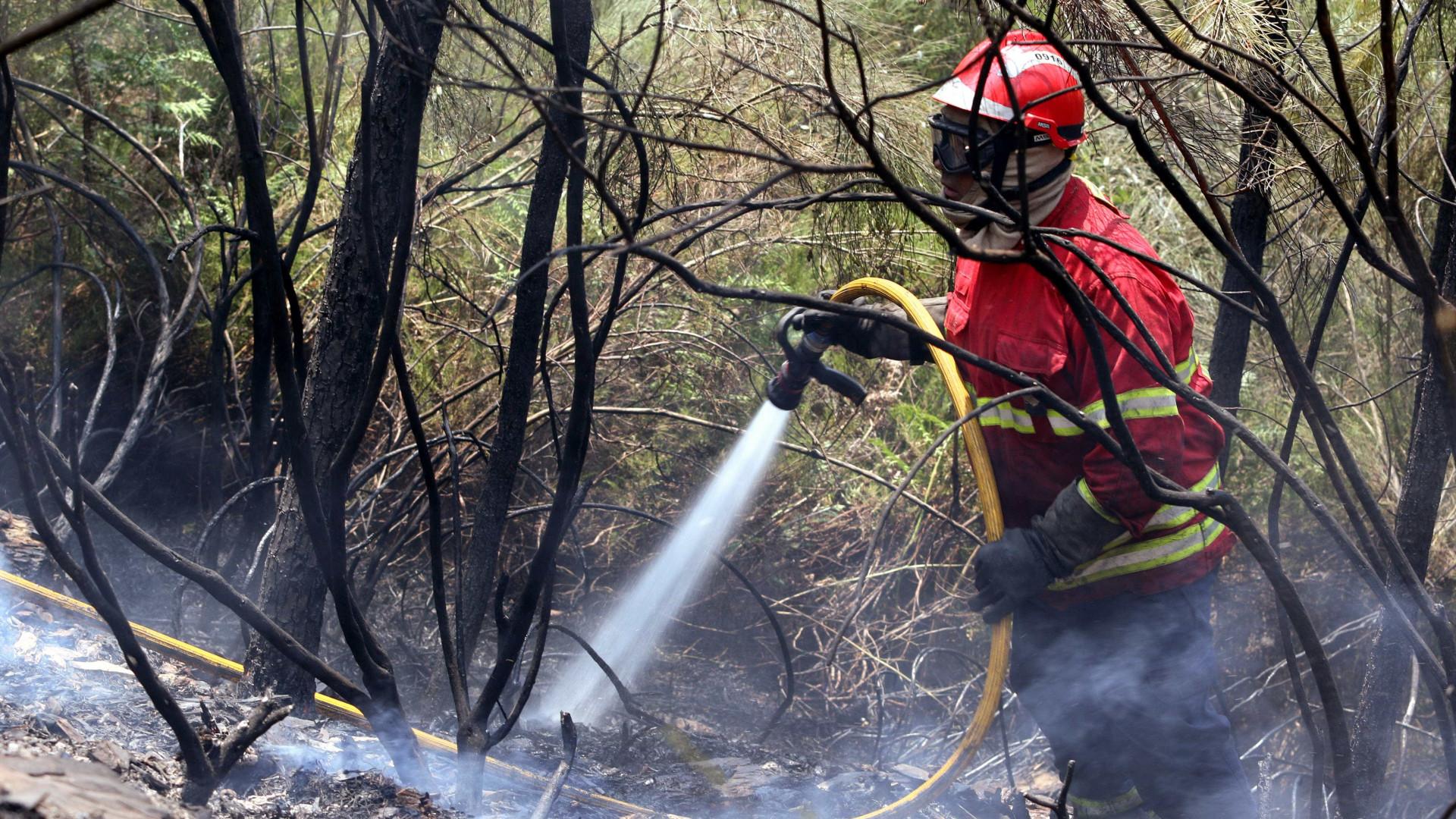 """Fogo em Góis continua ativo e com """"muita intensidade"""""""