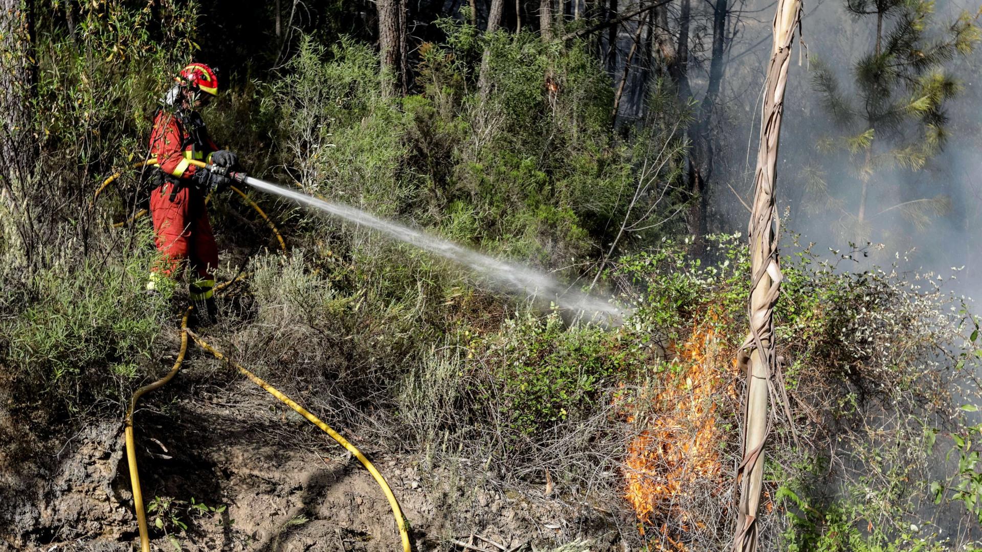 Mais de dois mil bombeiros combatem fogos em três distritos