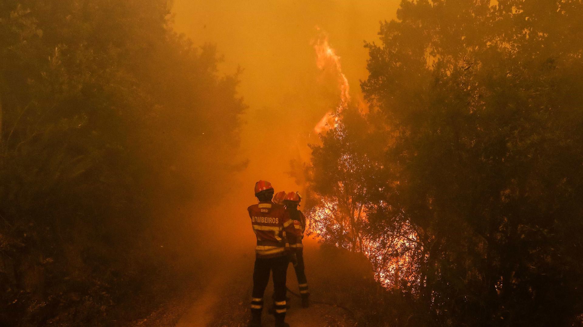 Incêndios: Ativado Plano de Emergência Municipal em Coimbra
