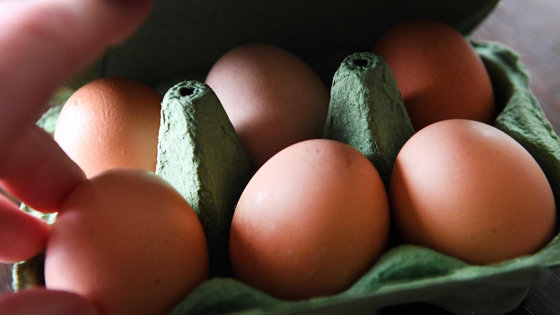 Bruxelas confirma ovos contaminados em 15 países da União Europeia