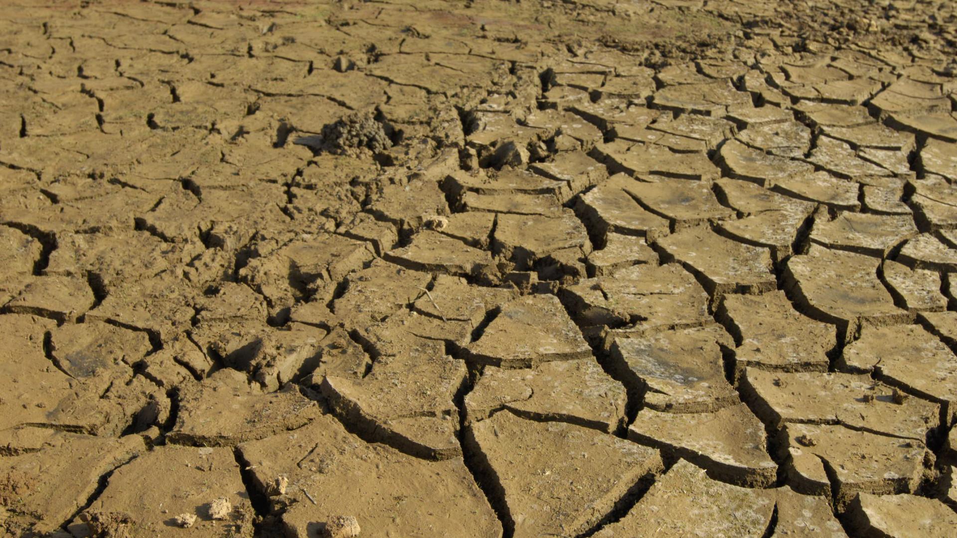 """Vimioso vive situação """"muito dramática"""" devido à falta de água"""