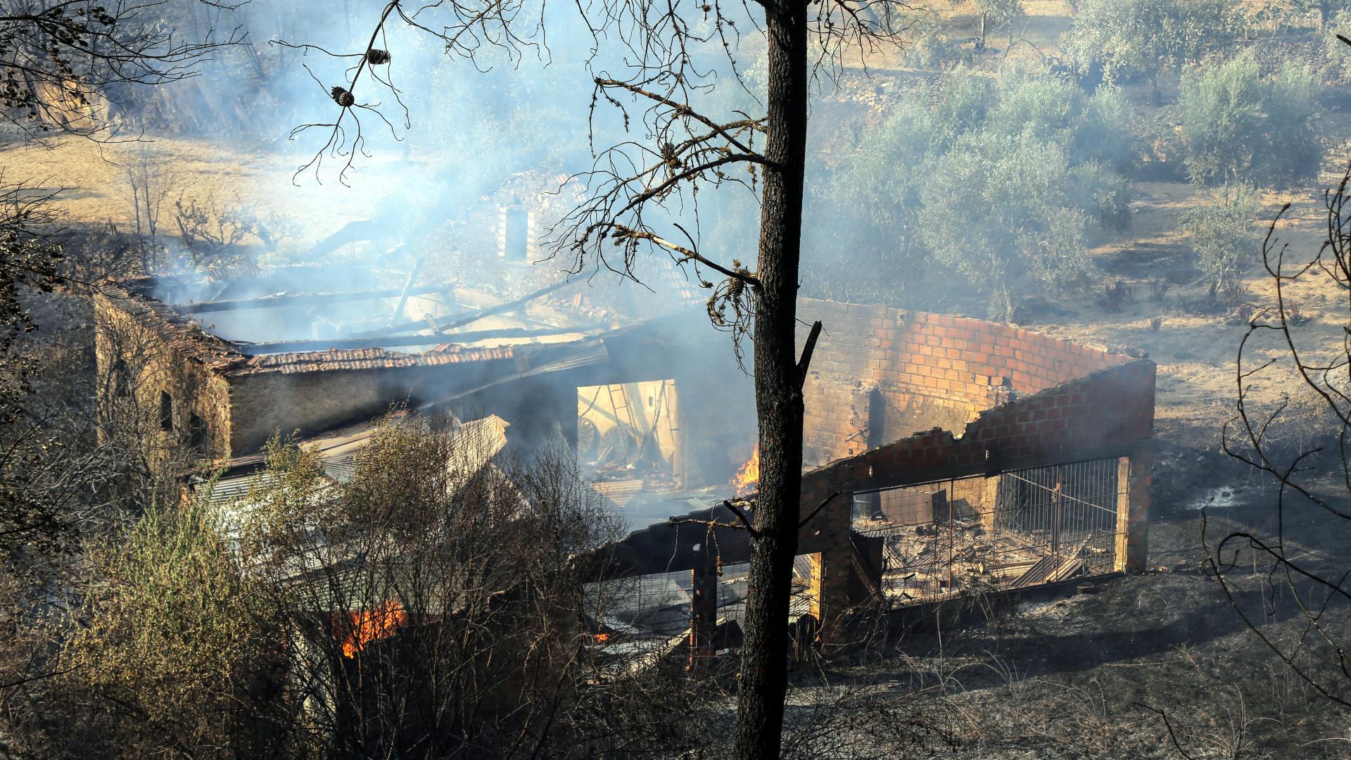Incêndios em Portugal: oito casas destruídas no distrito de Castelo Branco