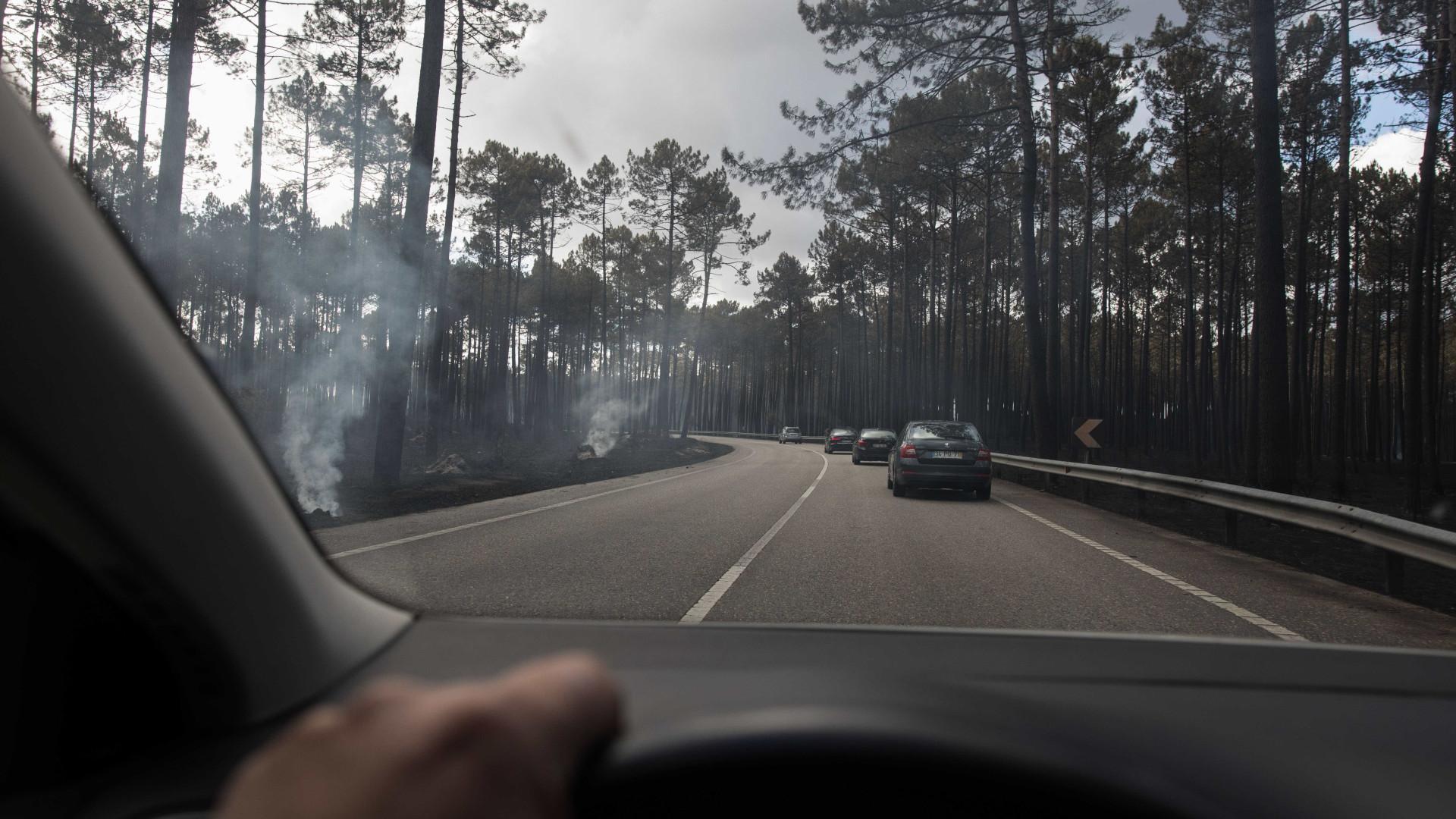 """Leiria: """"Turismo mórbido"""" dificulta ação de bombeiros em reacendimentos"""