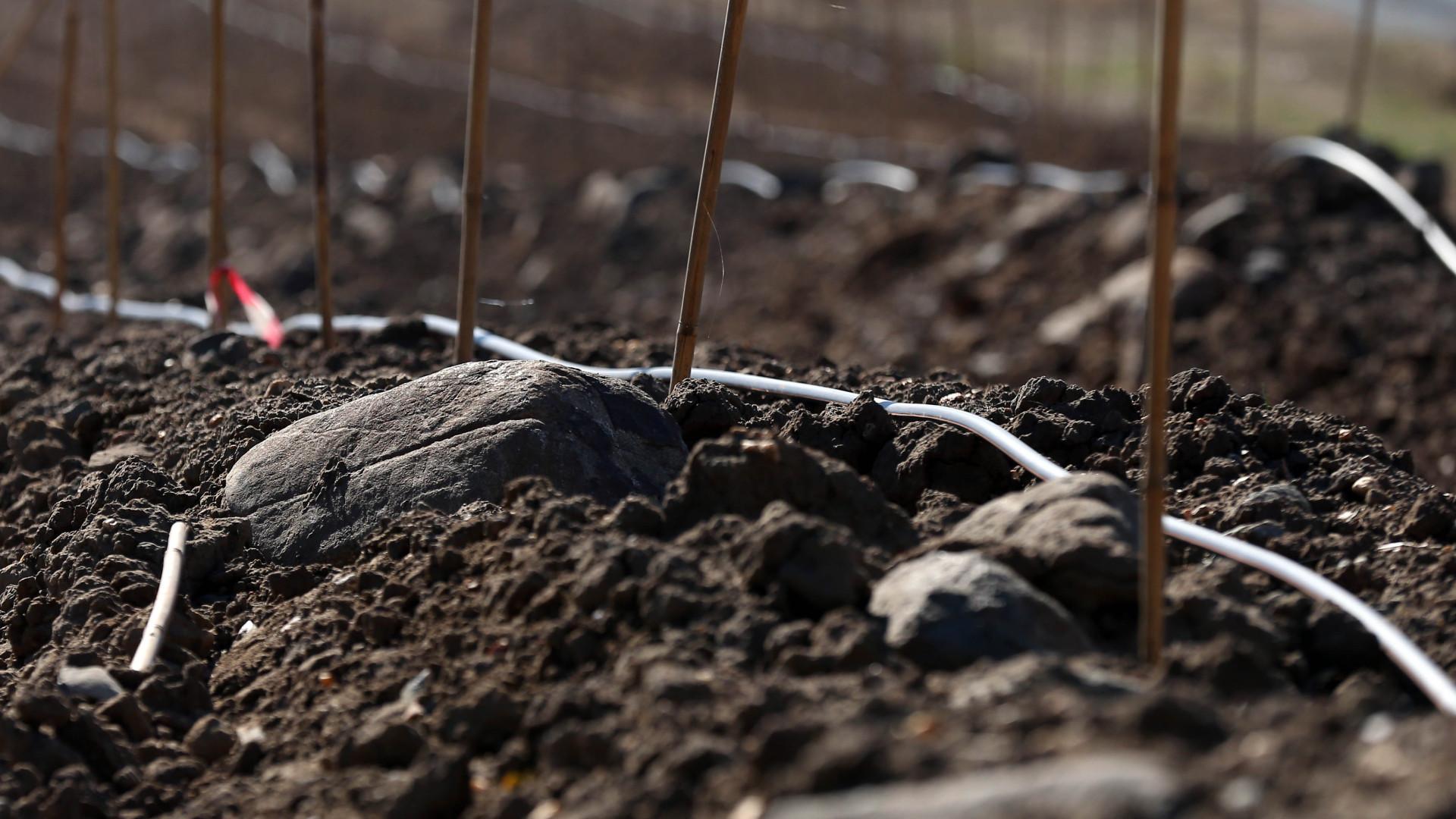DRCAlen quer prevenir destruição de sítios arqueológicos