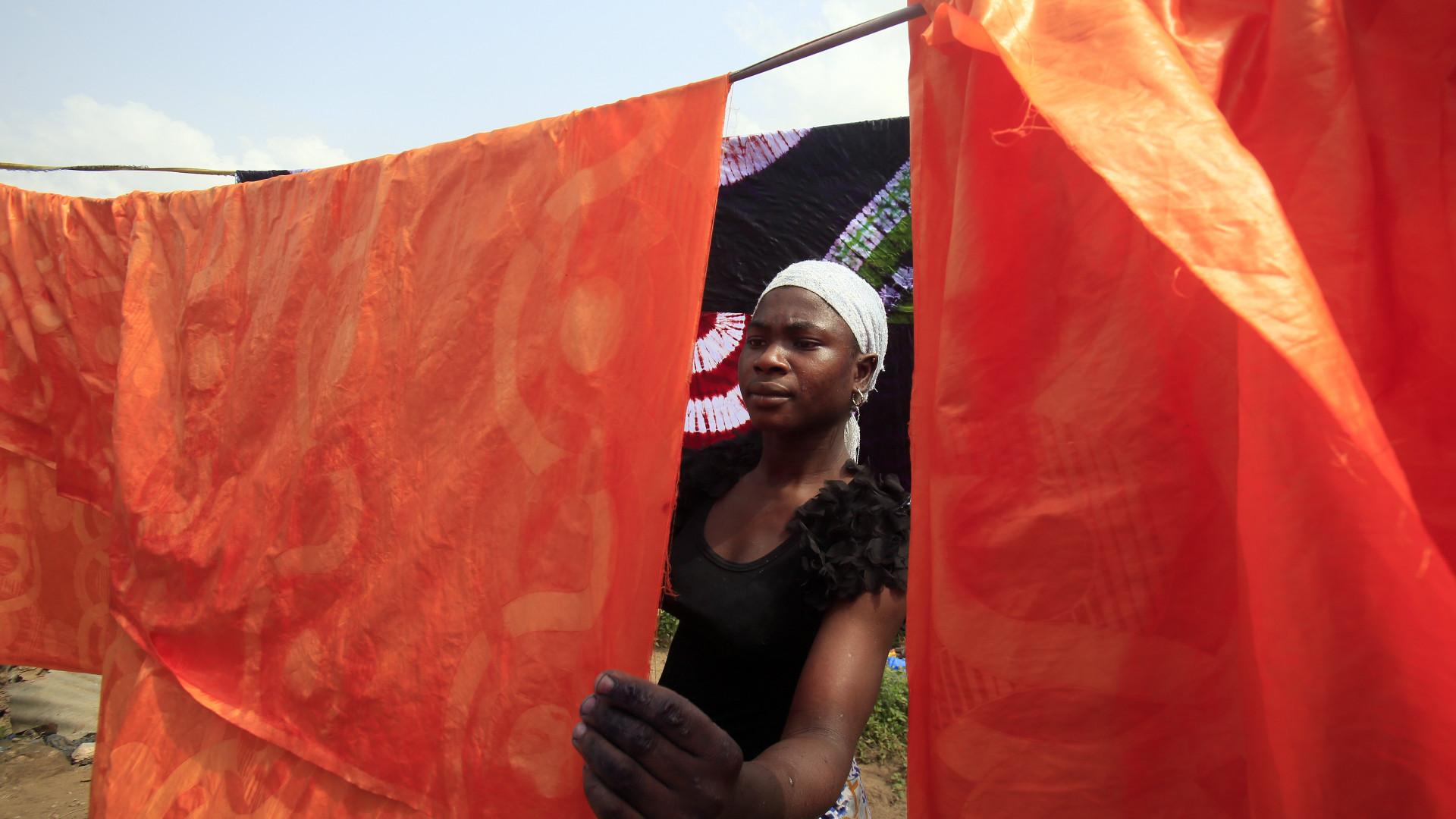 Exportação de fibra de algodão vai render 42,3 milhões a Moçambique