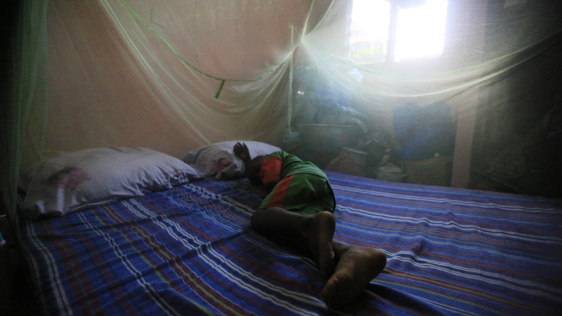 Cabo Verde sem casos autóctones de malária desde janeiro