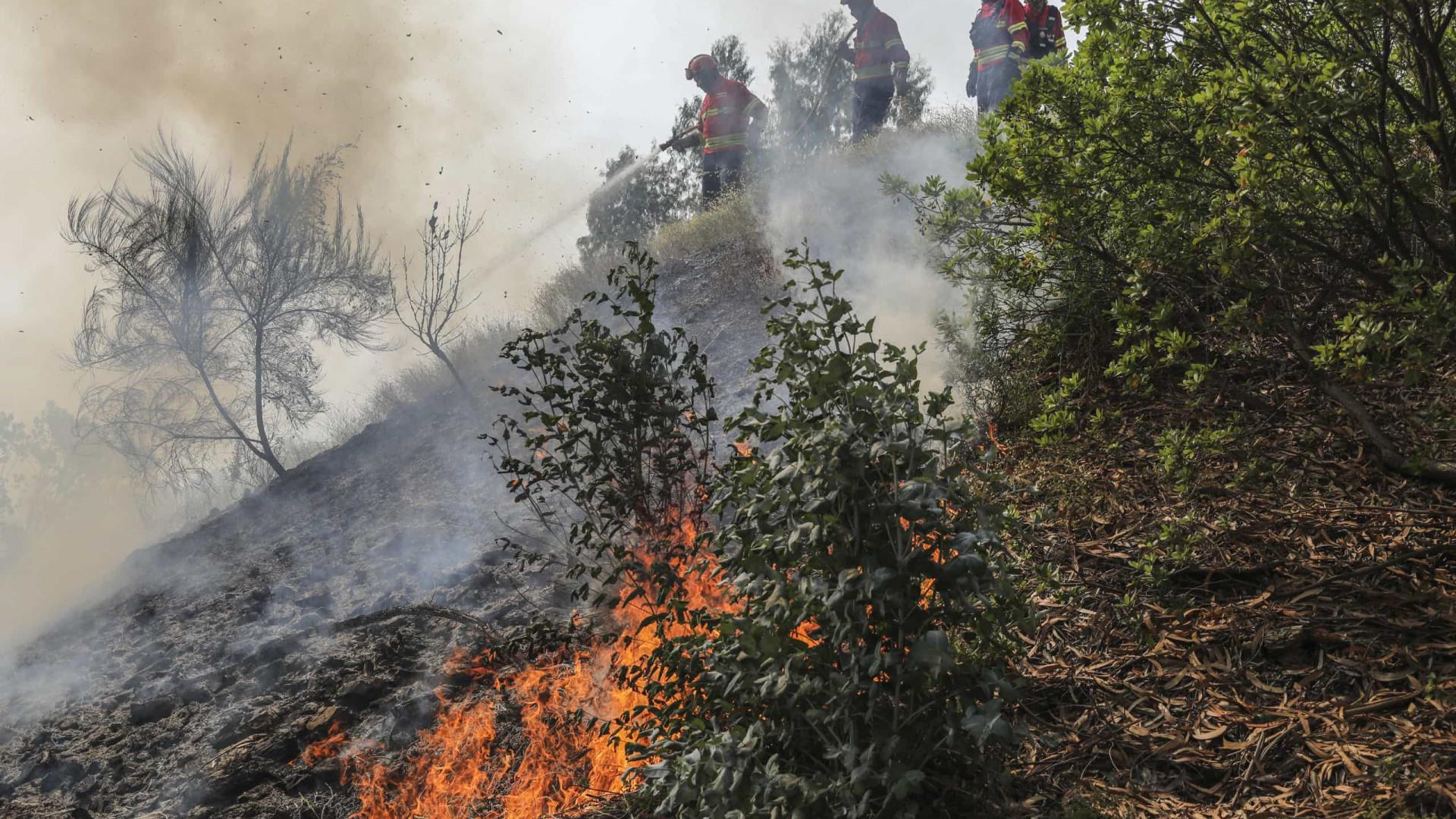 """Incêndios: """"Fortes reativações"""" em todo o perímetro do fogo em Monchique"""