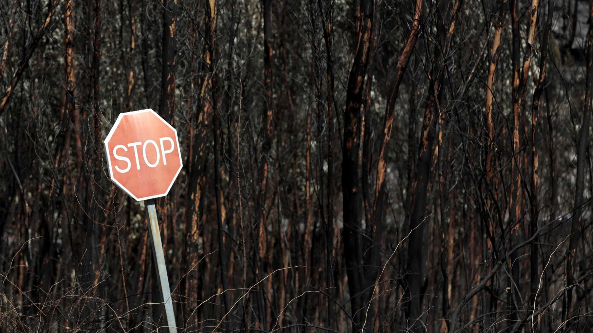 Proteção Civil coloca 13 distritos em alerta vermelho