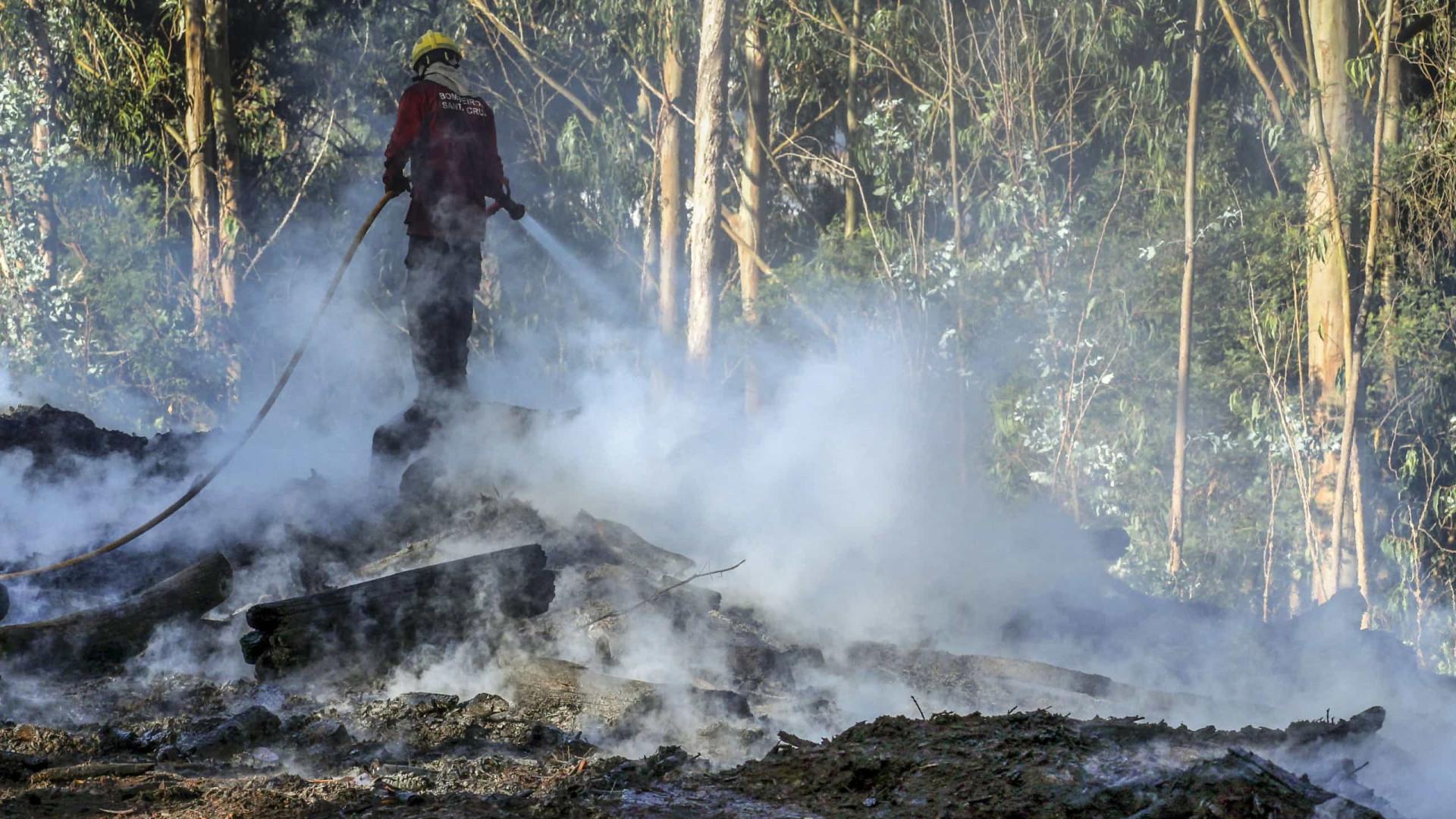 Fogo na Madeira entrou em fase de rescaldo