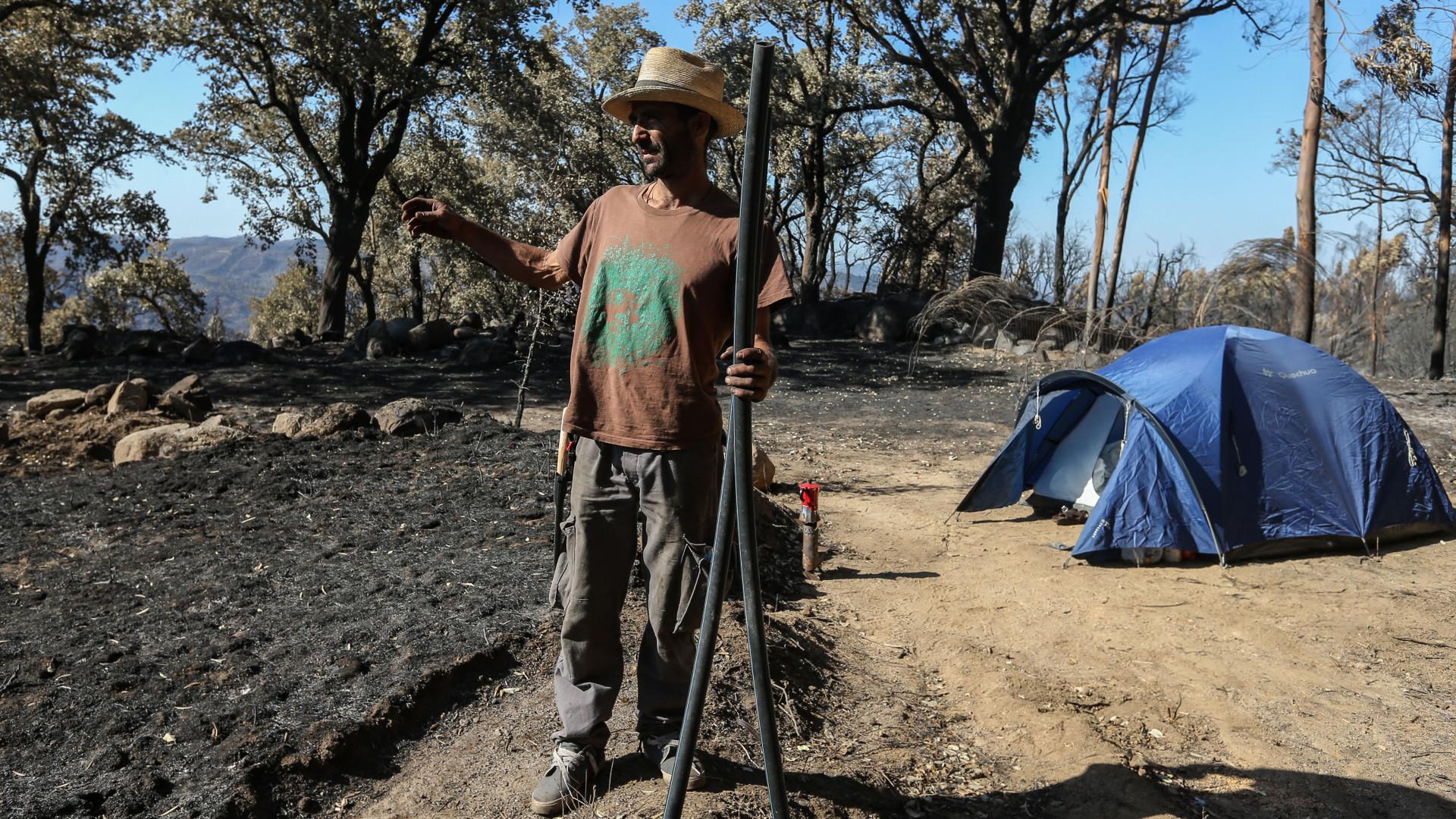 Há quem durma em tendas no meio da cinza enquanto reconstrói o que perdeu