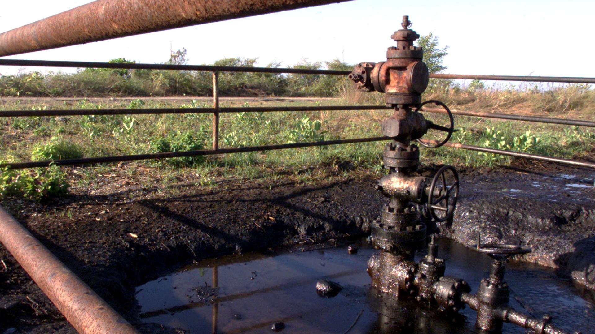 ONG questiona autorização do Ministério do Petróleo para dar licenças