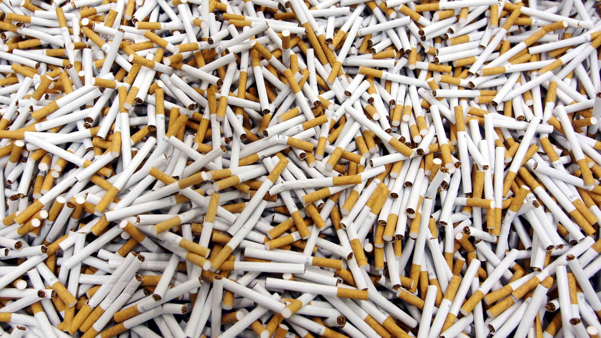 Fisco apreende 269 mil cigarros e 48 toneladas de folha de tabaco