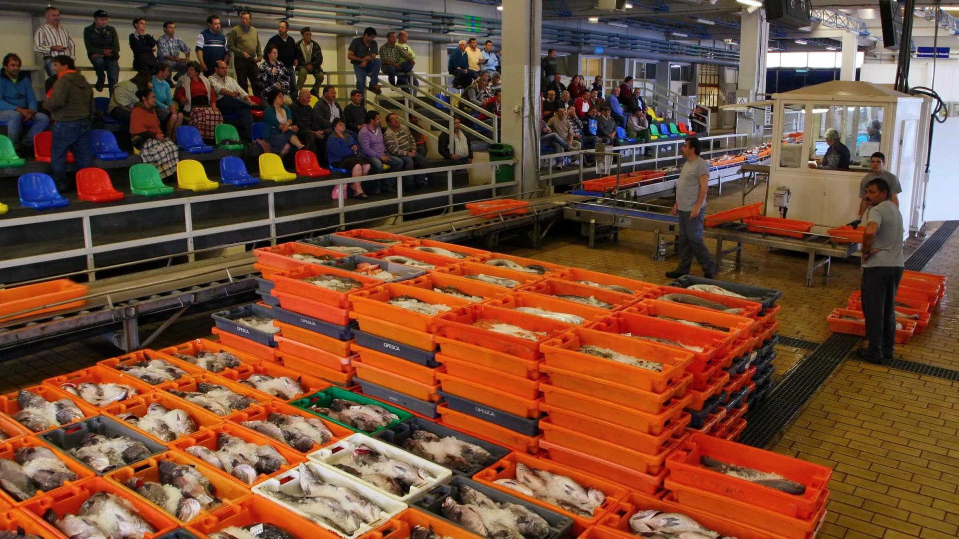 Docapesca diz que venda direta de pescado antes de entrar em lota é legal