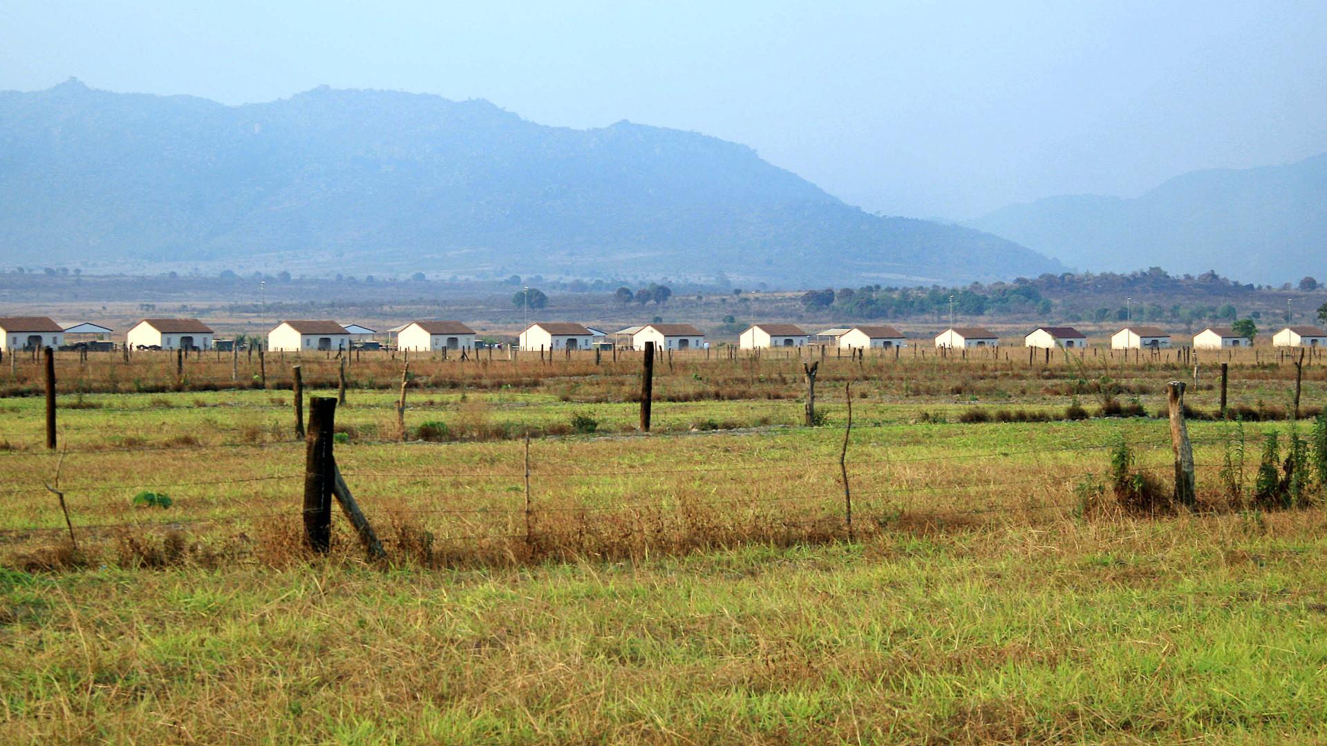 Angola precisa de cinco milhões de toneladas de cereais por ano