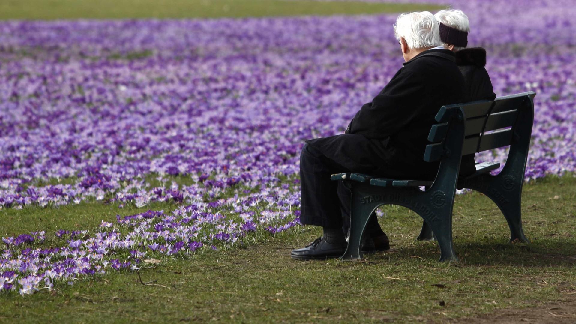 Complemento Solidário atribuido a mais idosos em março