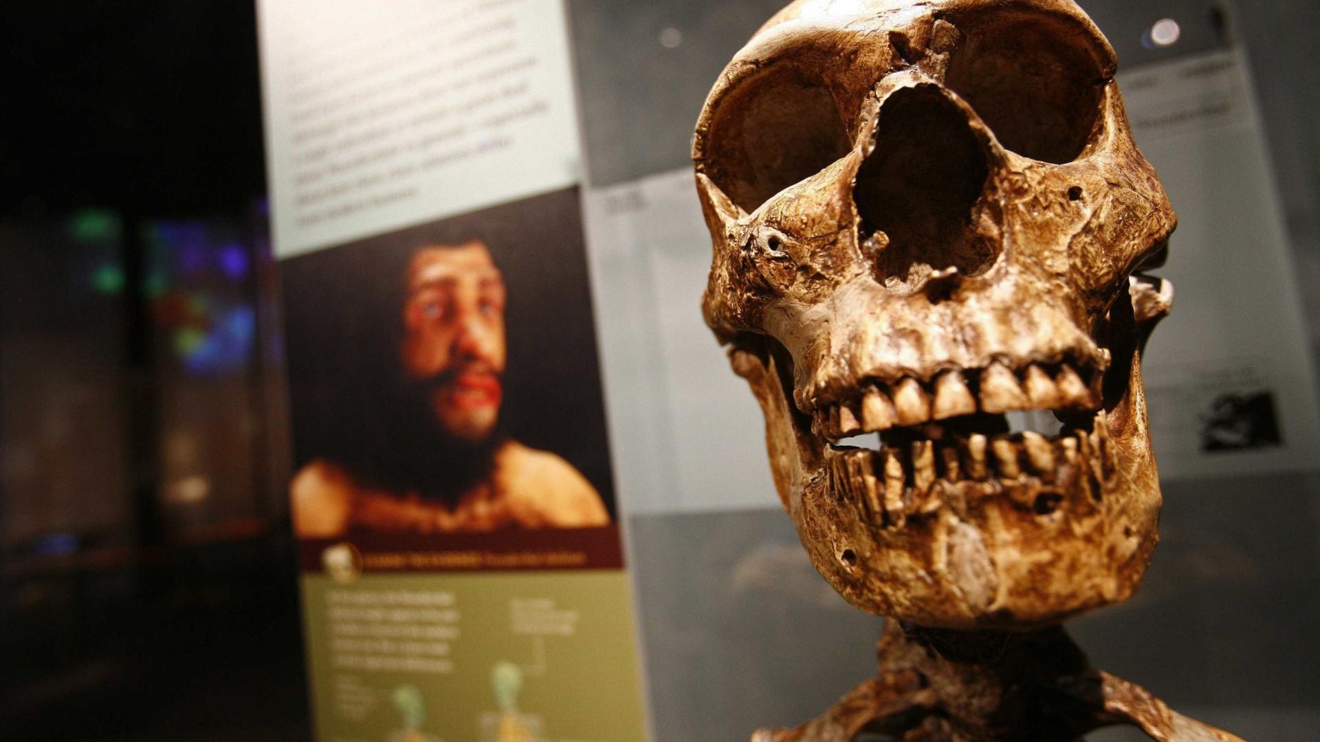 Humanos já se relacionavam em 'redes sociais' complexas há 34 mil anos