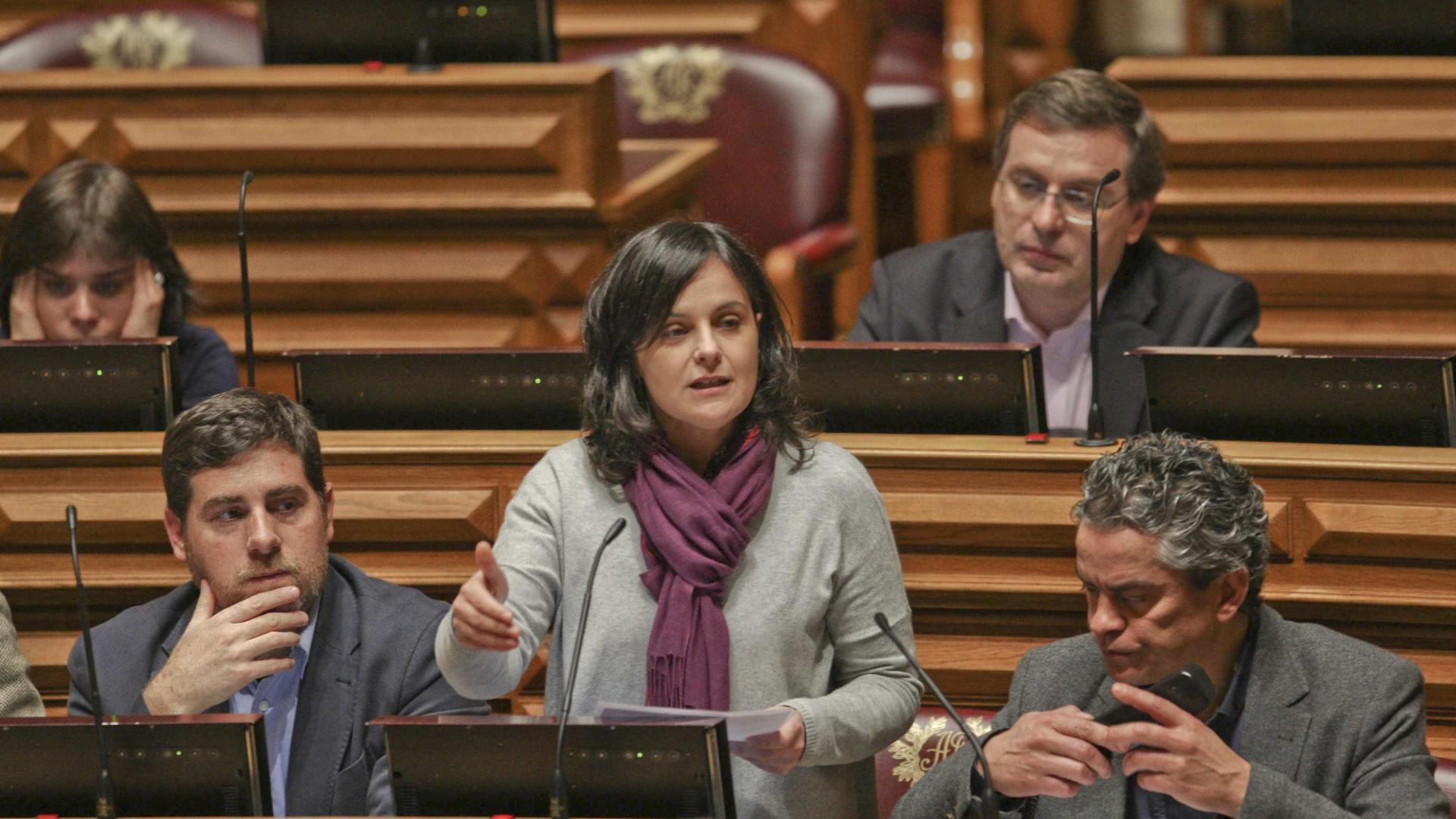PCP apela a medidas urgentes para travar a invasão de mimosas no Gerês