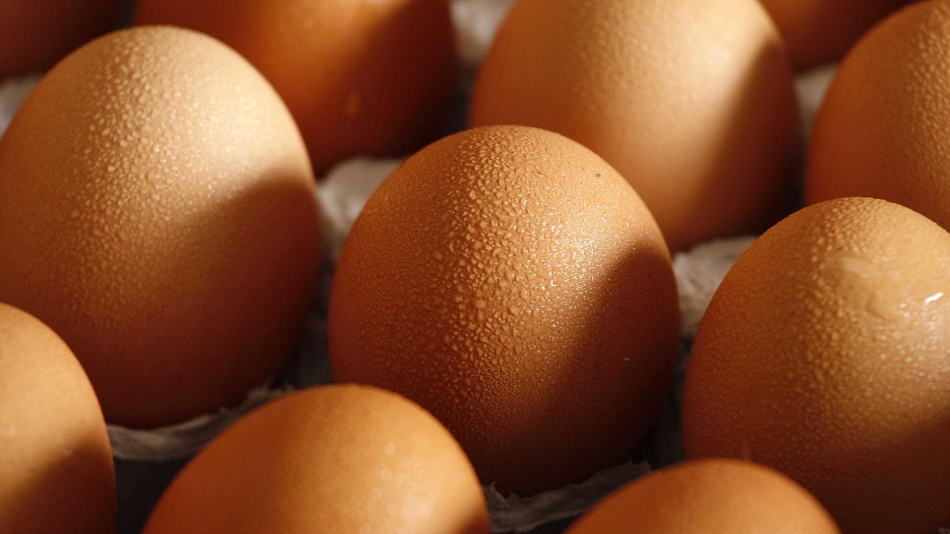 Lançado alerta por causa de ovos contaminados. Europa acompanha caso