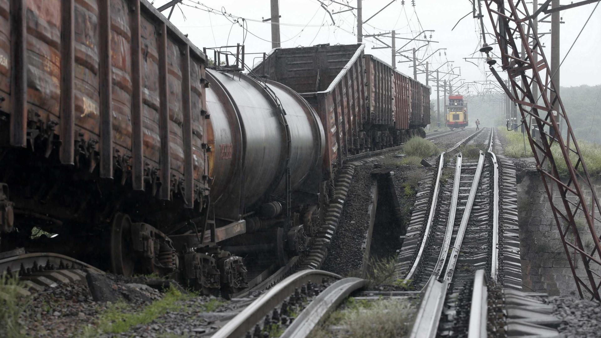 Comboios suburbanos transportam mais de 12 mil passageiros