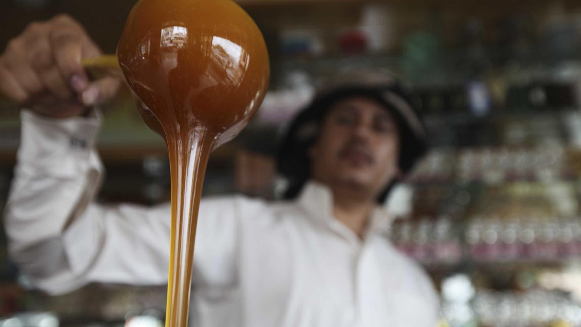 """Apicultores do Caramulo fazem festa do mel, apesar de ser """"pior ano"""""""
