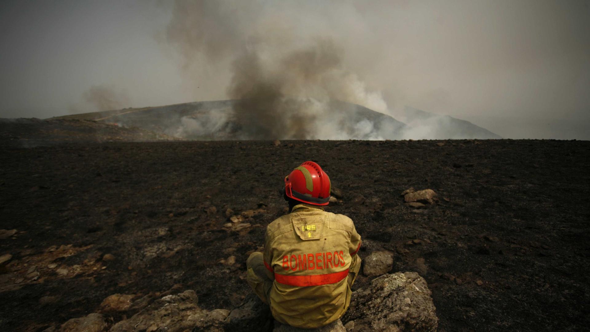 Faro: 150 bombeiros combatem fogo em zona de pinhal