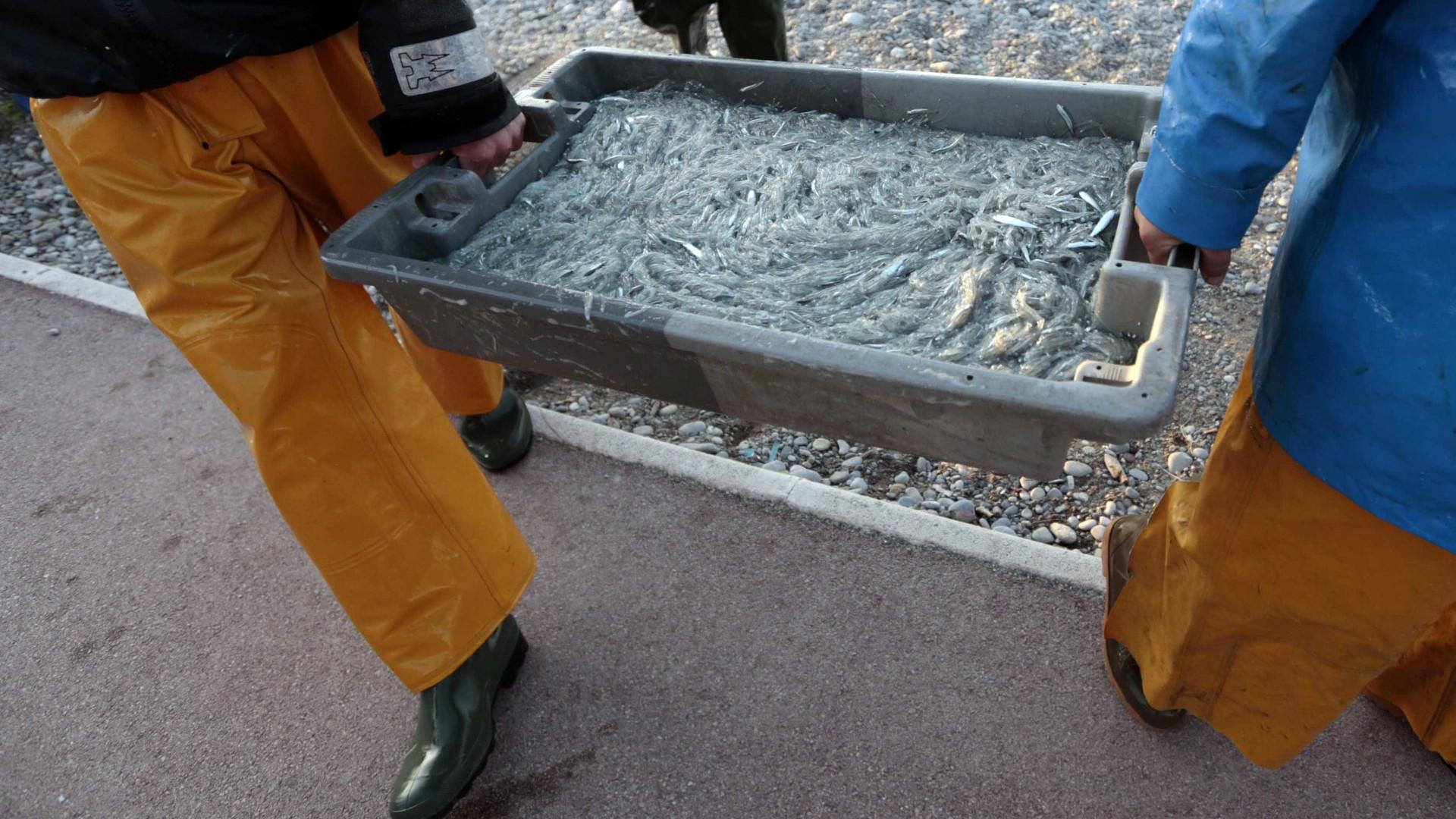 Projeto da ONG Oikos quer educar pescadores são-tomenses