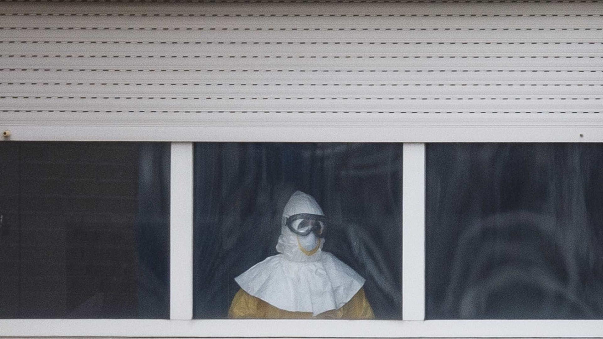 Ébola: Descobertos primeiros anticorpos humanos contra todas as estirpes