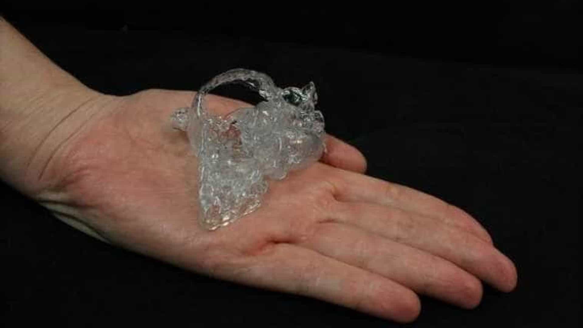Coração em 3D salva a vida de um bebé