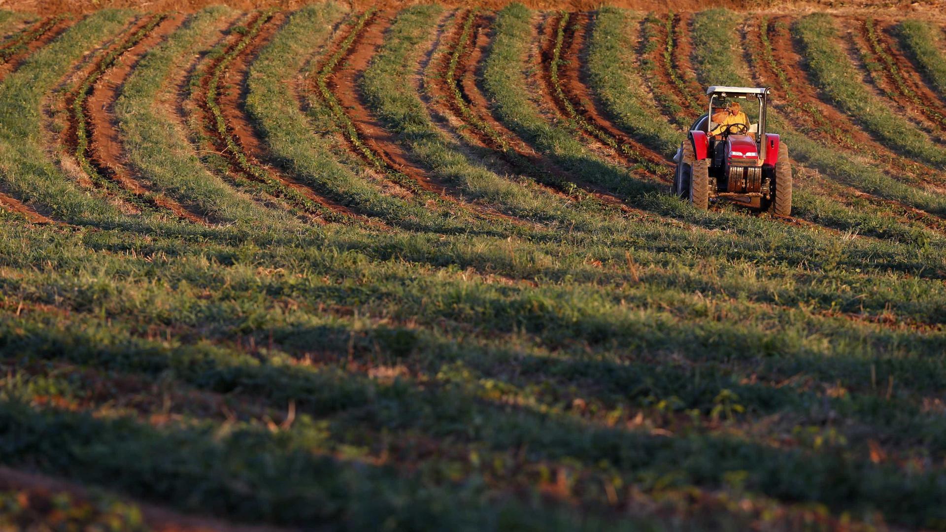 Produção agrícola recua 2,5% em Portugal em 2016