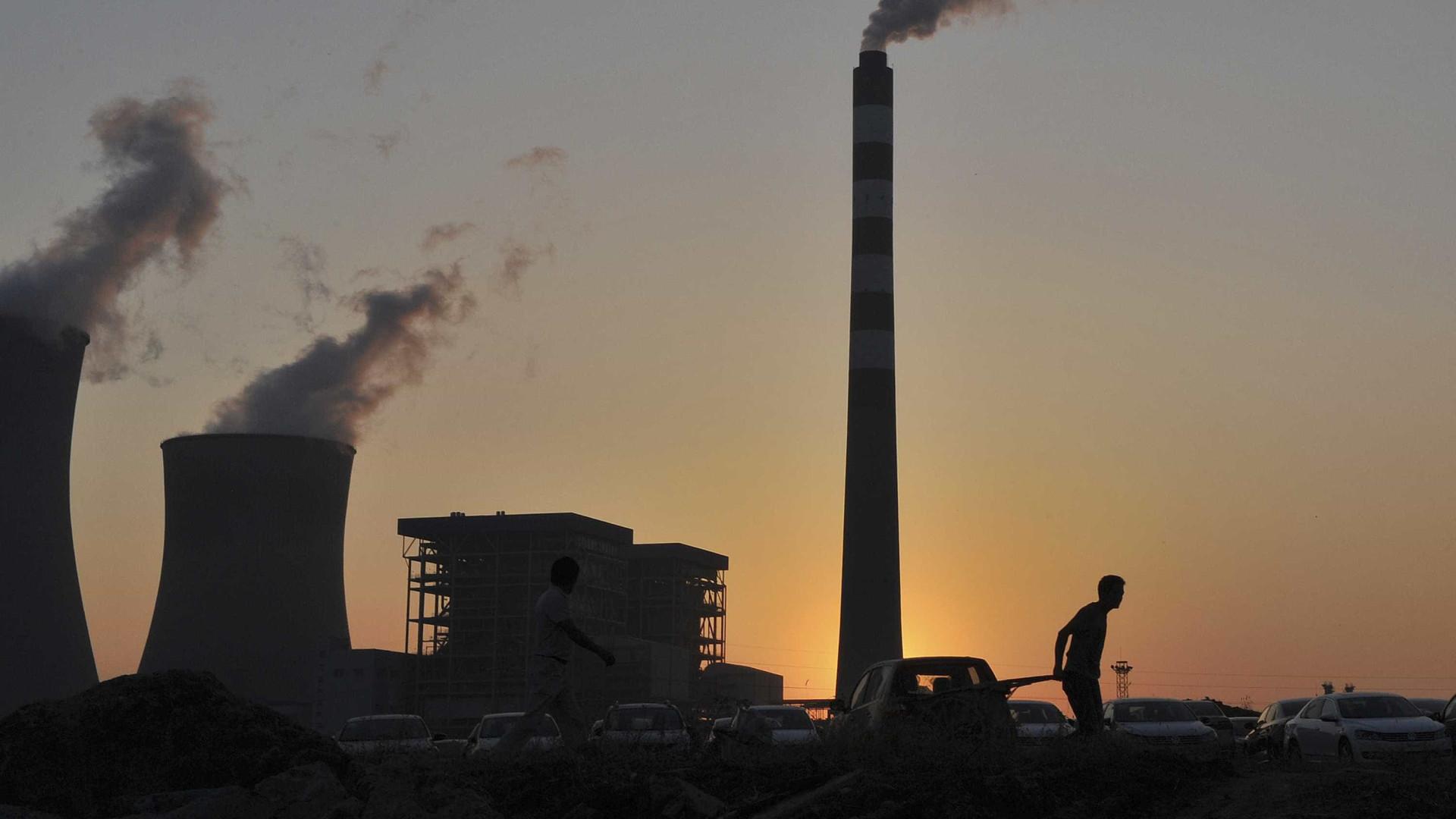 Iniciativa junta cientistas e empresas a procurar soluções sem carbono