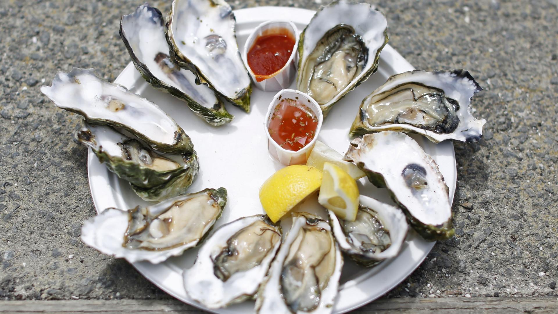 No Natal francês, as ostras portuguesas são as prendas mais desejadas
