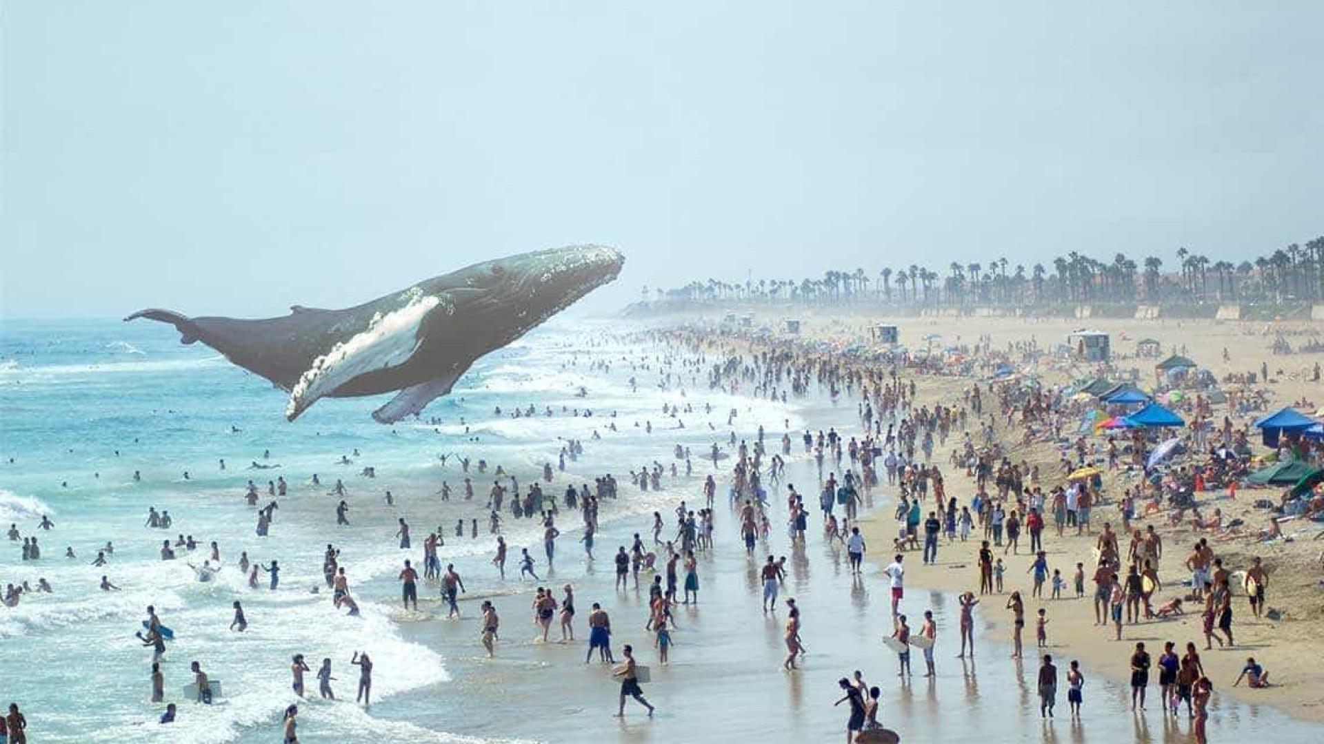 Startup de realidade aumentada continua a somar (muitos) milhões