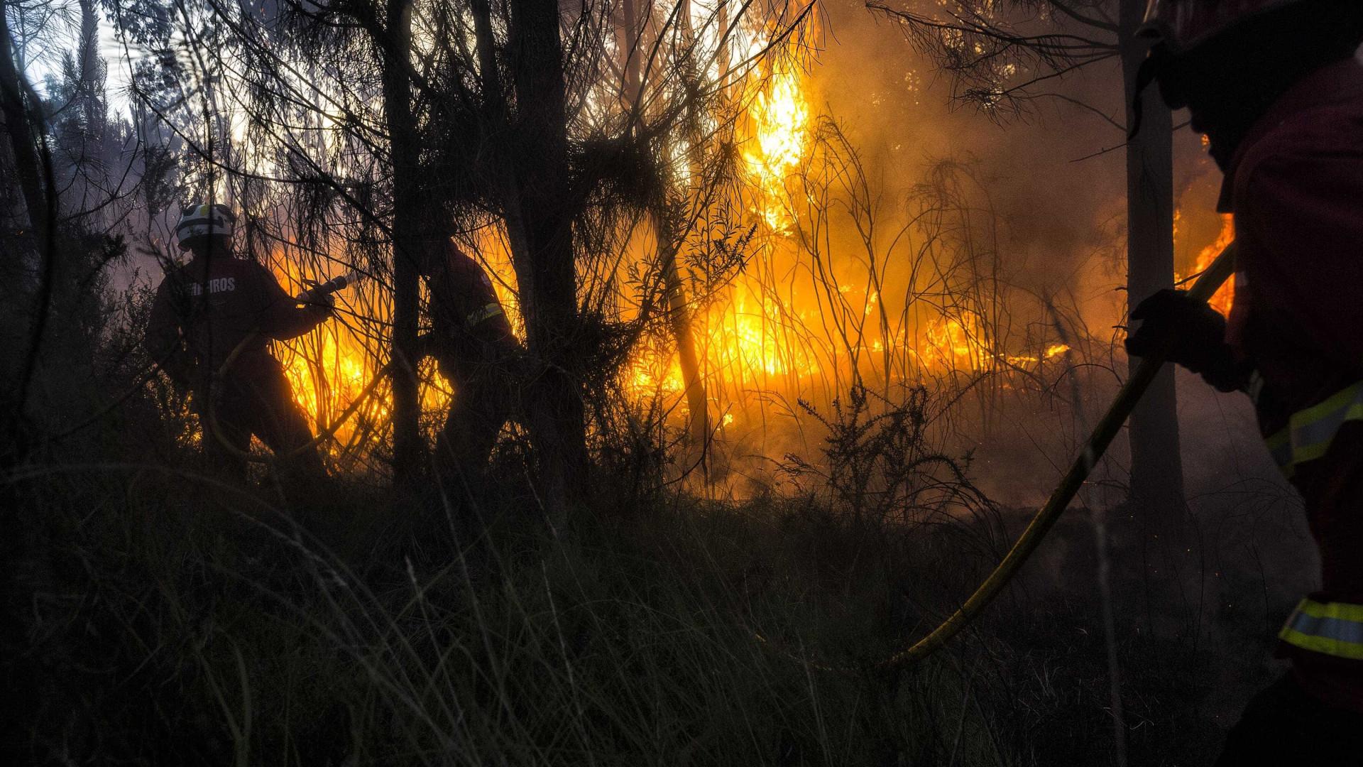 Presidente de Timor expressa solidariedade com vítimas de incêndios