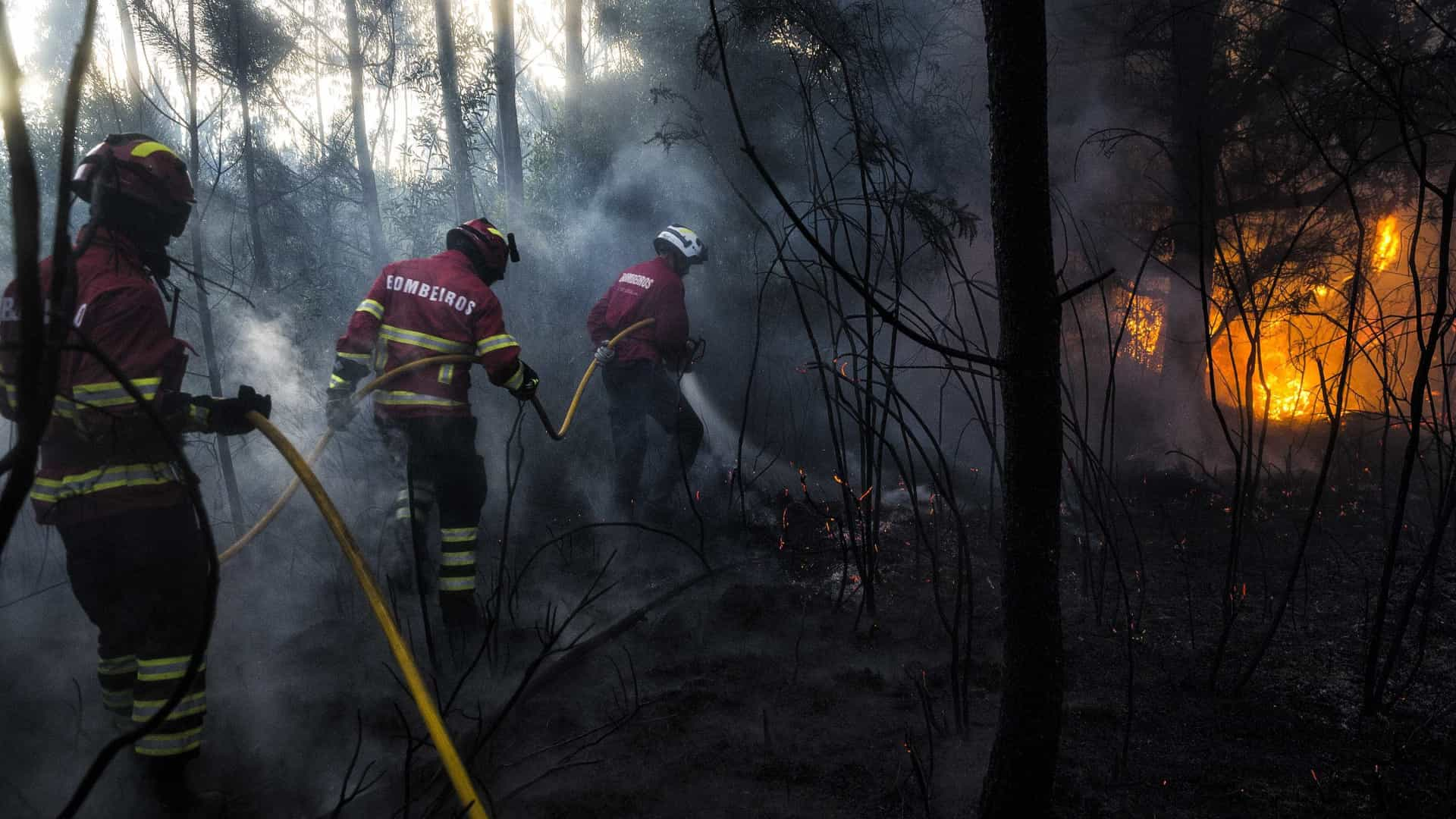Número de mortos sobe para 31 — Incêndios